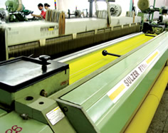 Weaving Looms for Polyester Mesh Production